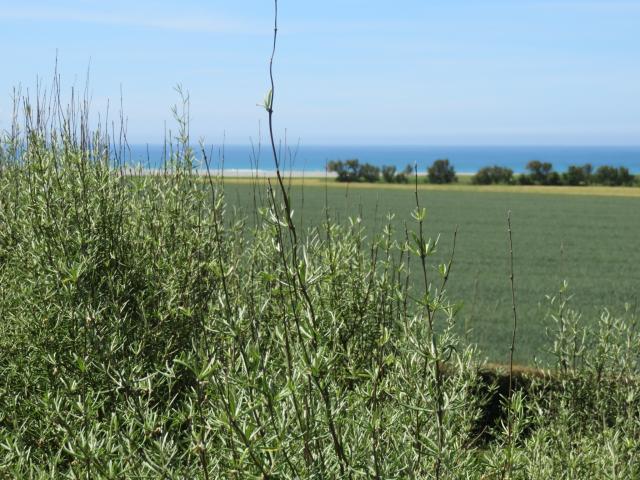 Location Villa Vacances PLOVAN (11)