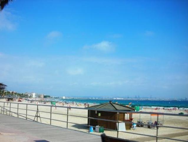 Location Appartement Vacances SALOU (11)