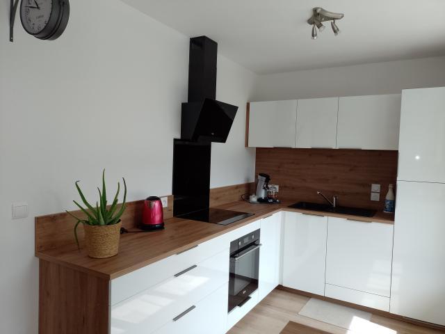Location Appartement Vacances ALBERTVILLE (5)
