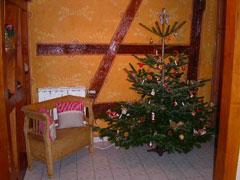 Location Gîte Vacances COSSWILLER (3)