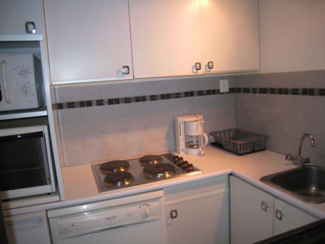 Location Appartement Vacances SAINT MARTIN DE BELLEVILLE (6)