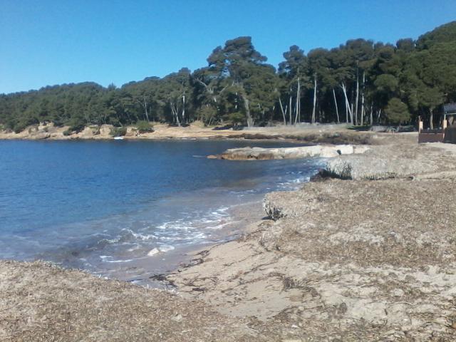 Location Appartement Vacances SAINT MANDRIER SUR MER (12)