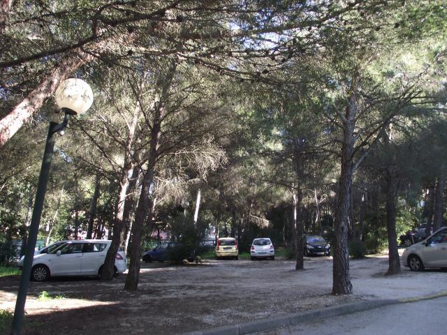 Location Appartement Vacances SAINT MANDRIER SUR MER (9)