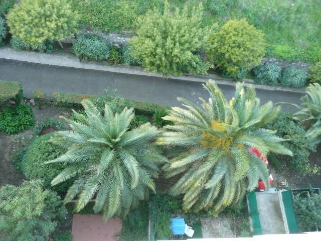 Location Appartement Vacances MENTON (10)