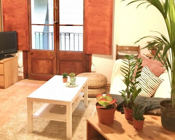Location Appartement Vacances BARCELONE (1)