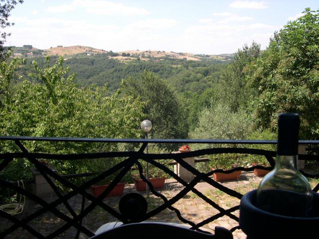 Location Villa Vacances FORMELLO (12)