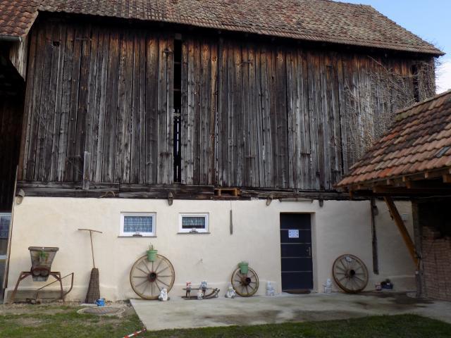 Location Gîte Vacances RHINAU (1)
