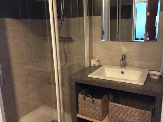 Location Appartement Vacances LES DEUX ALPES (6)
