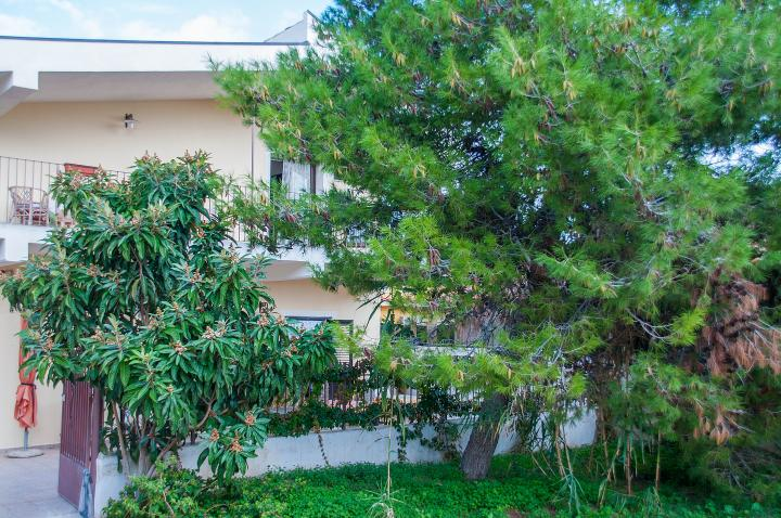 Location Appartement Vacances AVOLA (2)