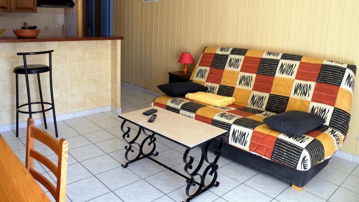 Location Appartement Vacances SAINT CYPRIEN PLAGE (2)