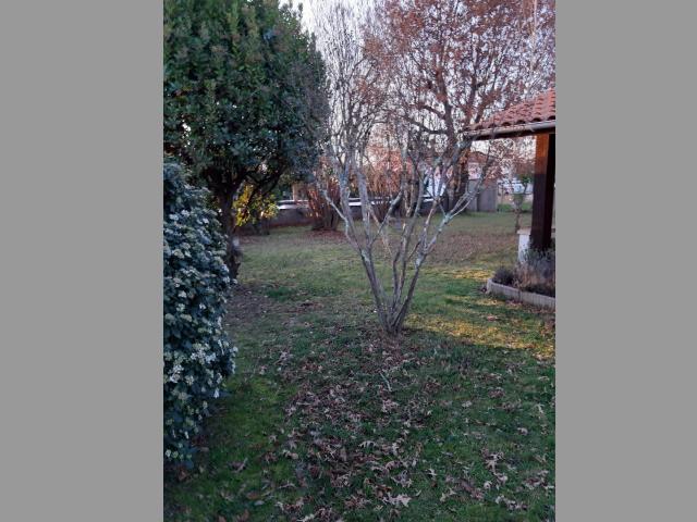 Location Maison Vacances AUDENGE (2)