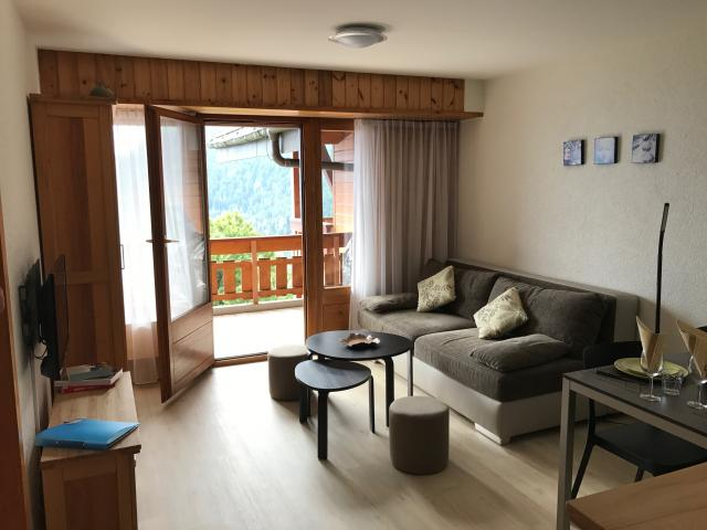 Location Appartement Vacances OVRONNAZ (5)