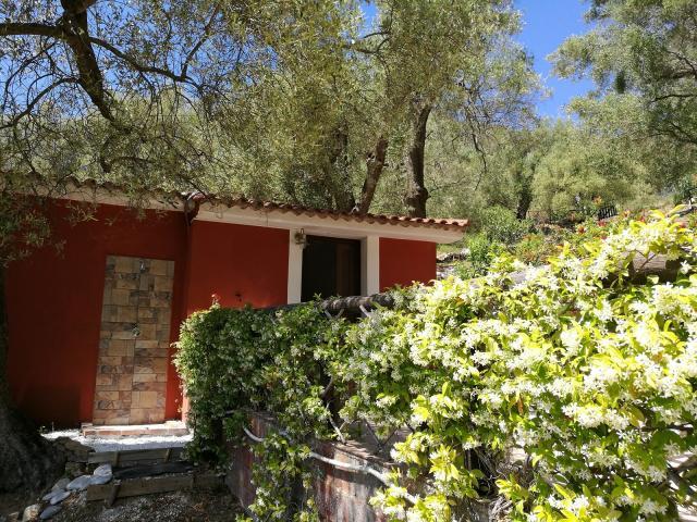 Location Appartement Vacances PISCIOTTA (10)