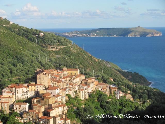 Location Appartement Vacances PISCIOTTA (12)