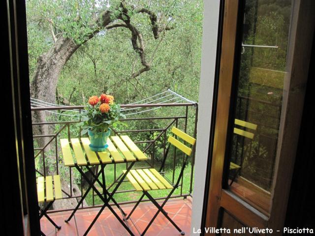 Location Appartement Vacances PISCIOTTA (5)