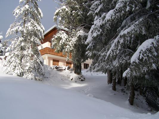 Location Chalet Vacances LE REVARD (1)