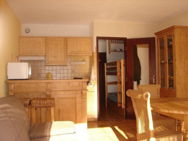 Location Appartement Vacances SAINT LARY SOULAN (4)