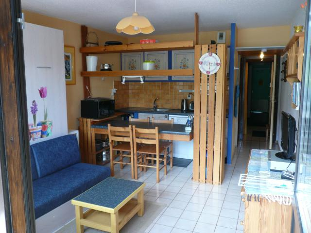 Location Appartement Vacances PIAU ENGALY (1)