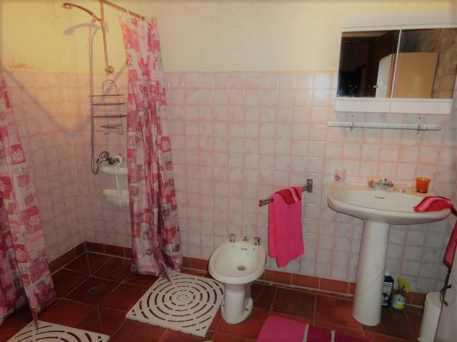 Location Maison Vacances LA SAUVETAT DU DROPT (8)