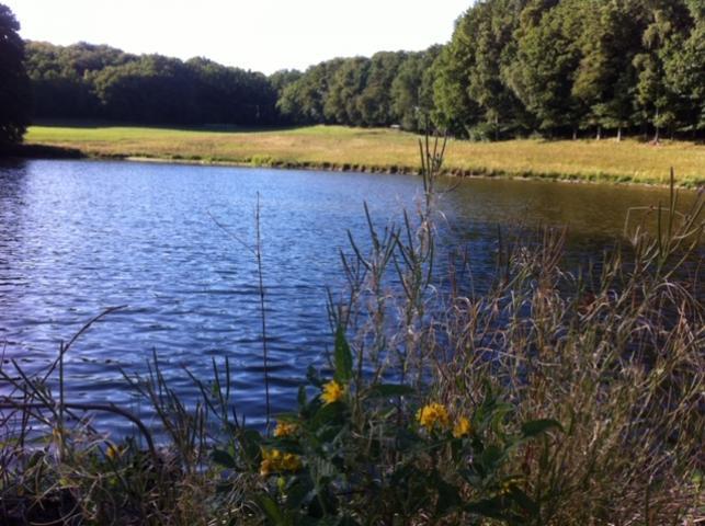 Location Gîte Vacances ROUMÉGOUX (8)