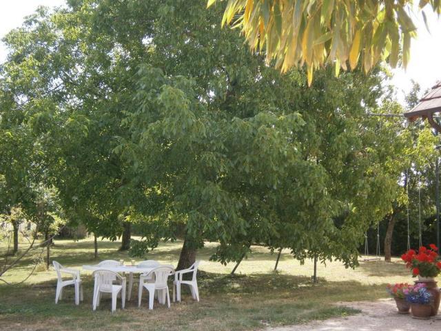 Location Gîte Vacances SENNECEY LE GRAND (8)