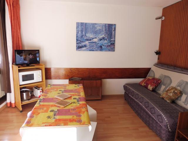 Location Appartement Vacances LA MONGIE (1)