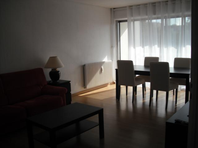 Location Appartement Vacances DIJON (3)