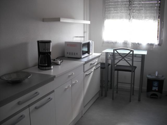Location Appartement Vacances DIJON (4)