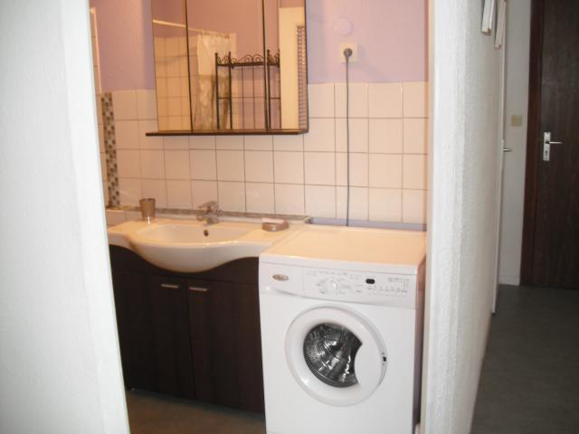 Location Appartement Vacances DIJON (9)