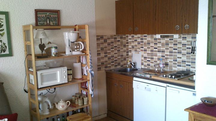 Location Appartement Vacances L'ALPE D'HUEZ (4)