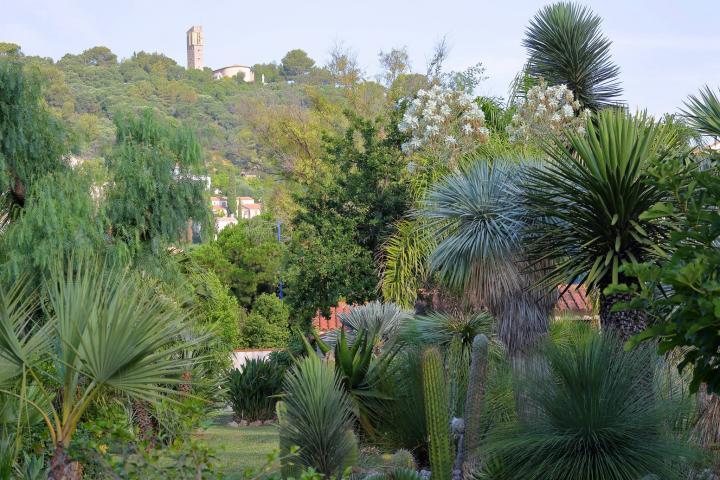 Location Villa Vacances HYÈRES LES PALMIERS (2)