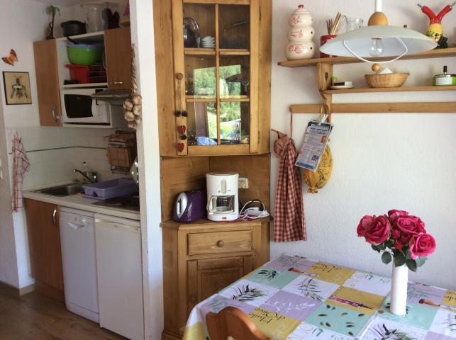 Location Appartement Vacances AURON (7)