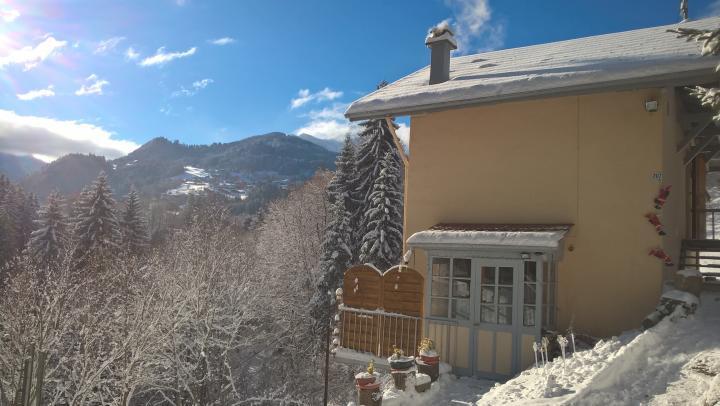 Location Appartement Vacances SAINT GERVAIS MONT BLANC (1)