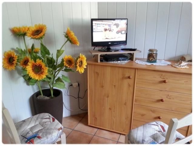 Location Appartement Vacances APREMONT (5)
