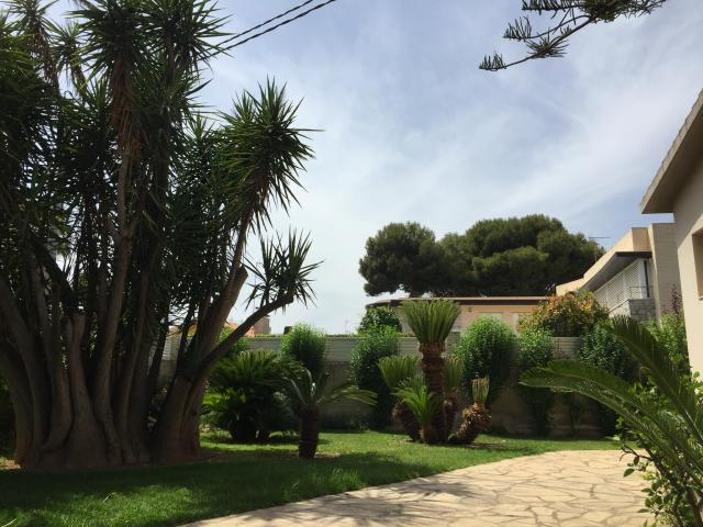 Location Chalet Vacances BENICARLO (8)