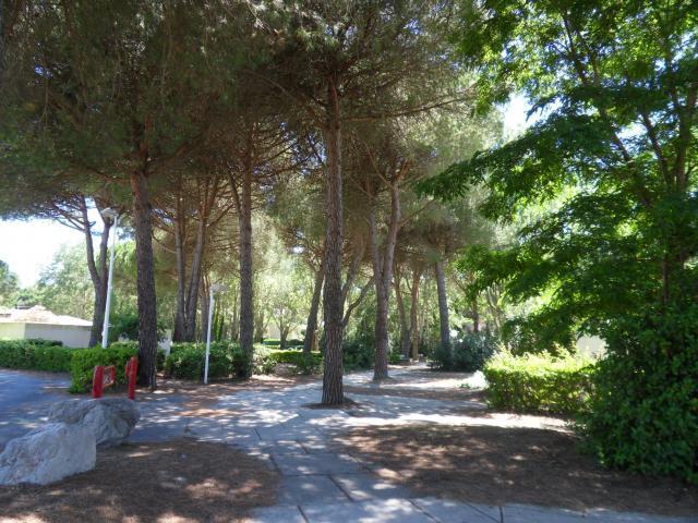 Location Appartement Vacances LA GRANDE MOTTE (10)