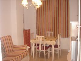 Location Appartement Vacances PLAYA HONDA (1)