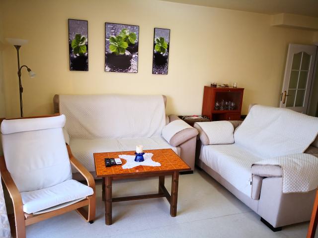 Location Appartement Vacances ALGARROBO (9)