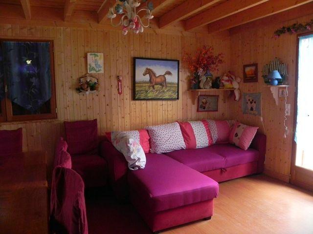 Location Chalet Vacances SOUVIGNY EN SOLOGNE (8)