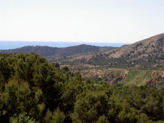 Location Gîte Vacances FINESTRAT (4)
