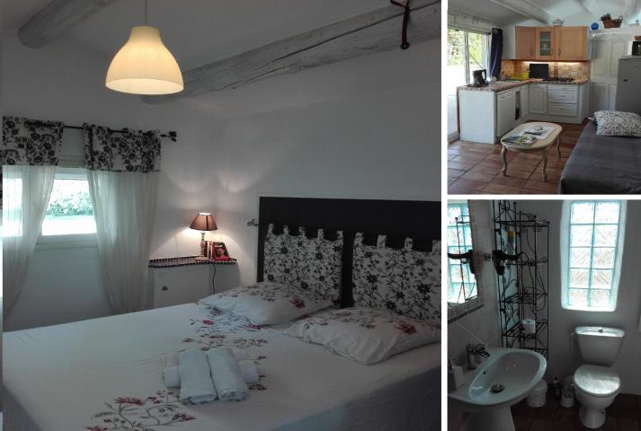 Location Maison Vacances BÉDARRIDES (12)