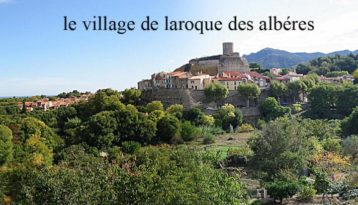 Location Appartement Vacances LAROQUE DES ALBÈRES (10)